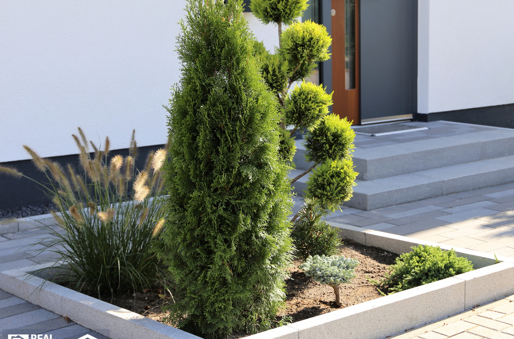 Why You Need A Low Maintenance Landscape in Ankeny